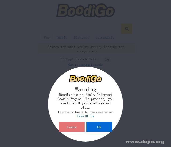 Boodigo 全世界第一个成人(好孩子)搜索引擎